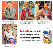 a field manual of camel diseases free download